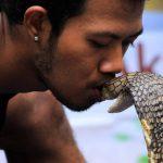 Kiss a snake